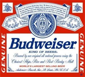 Budweisder logo